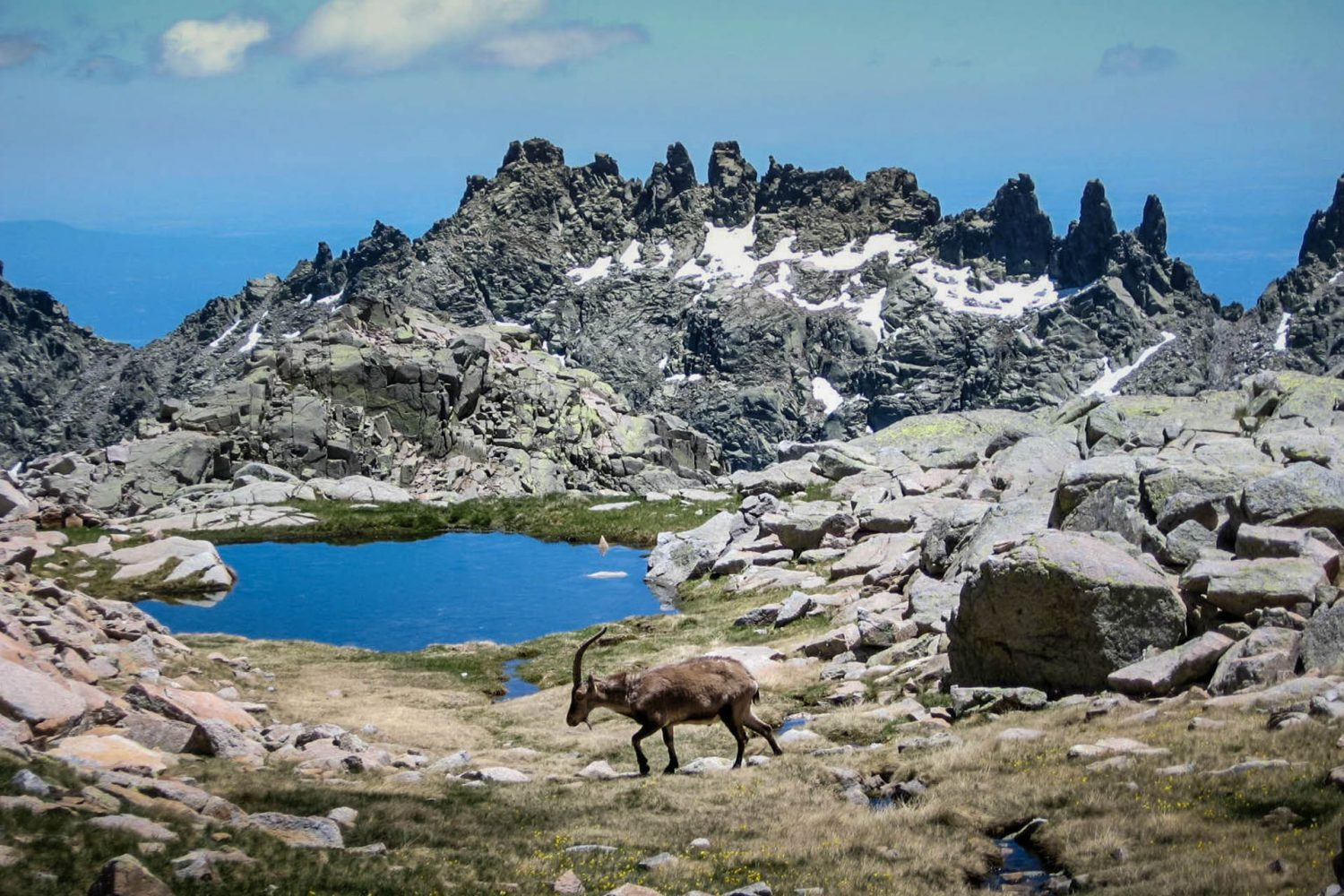 Hiking Sierra de Gredos with Iberian Adventures