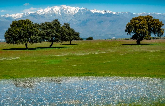 Sierra de Gredos with Iberian Adventures