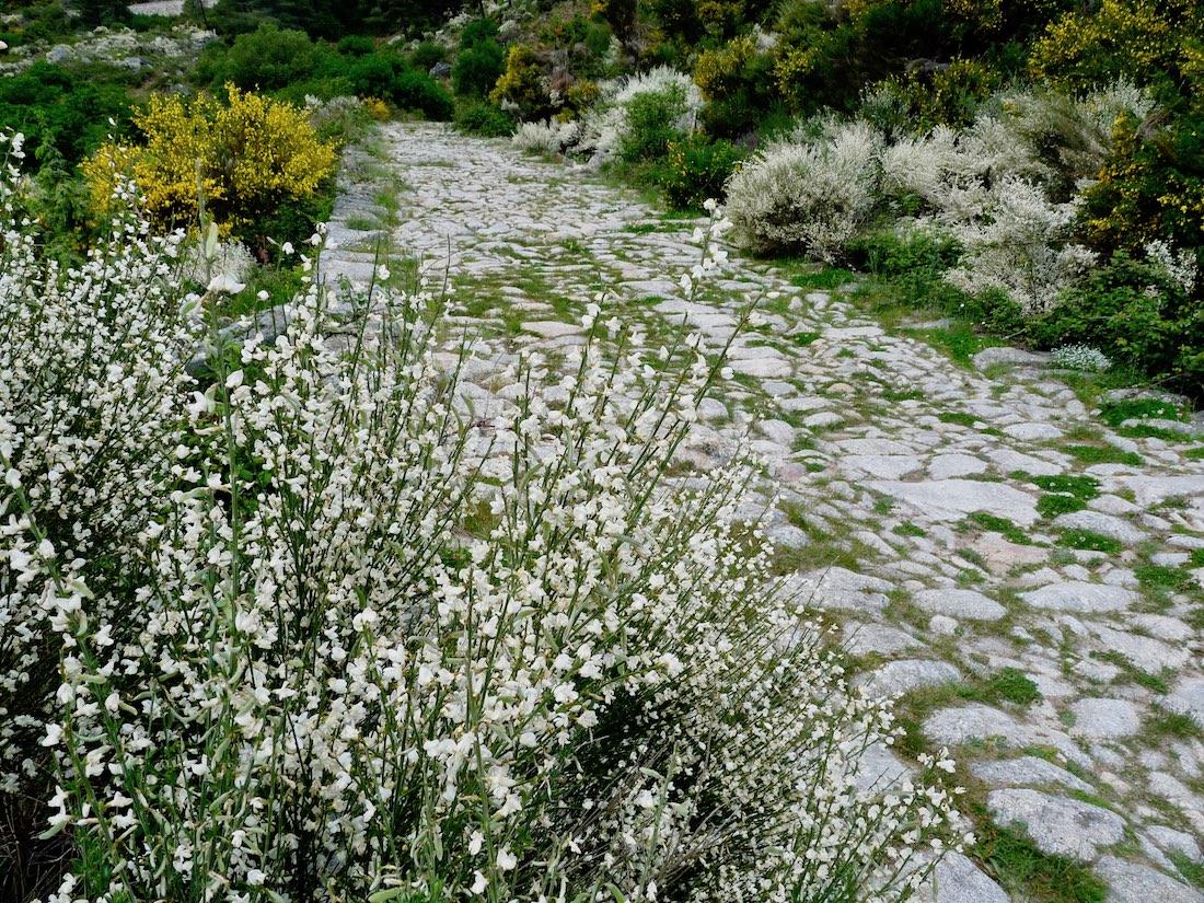 Sierra de Gredos roman road
